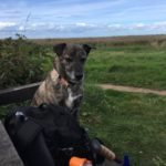MarGins walking and glamping holidays north norfolk coast path