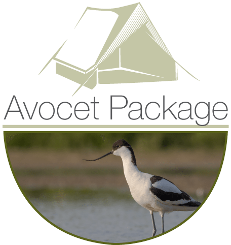 Avocet Walking Holiday , Starting in Hunstanton and finishing in Hopton-on-Sea  | Walk the full 84 miles of the Norfolk Coast Path National Trail while we set up your glamping tents and transfer your luggage along the way. | Norfolk Coast, Walking, Walking Holiday, dog friendly, National Trail, Glamping, Outdoors, Nature, Coast, Wildlife, Holiday