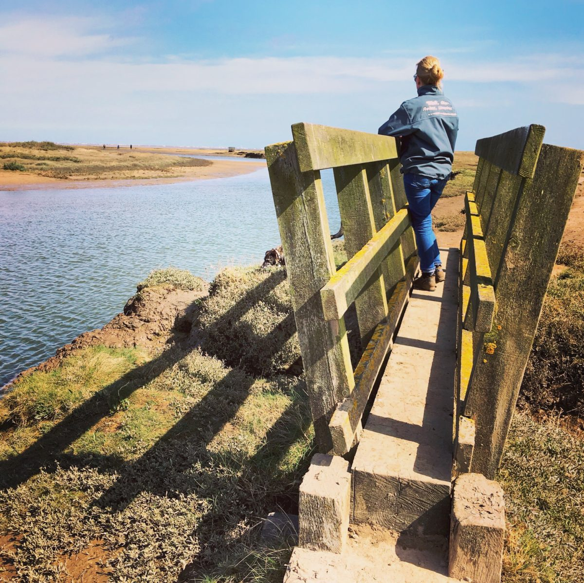 A time to stop and reflect on Stiffkey bridges