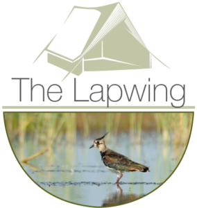 TheLapwing